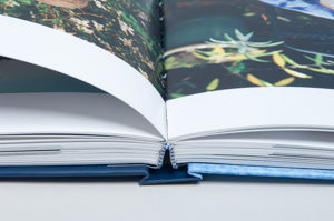 closeup of pages, spine and headband of handmade book